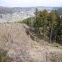 山頂付近から本丸跡を見下ろす