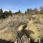田峯城(春)