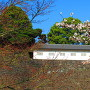 蓮池堀の石垣と富士見多聞の富士山側