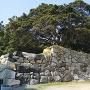 萩城 石垣