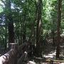 自然観察の森・園内にある空堀跡