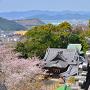 妙見神社と鯱瓦、山並み