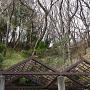 公園側から見える竪堀っぽい地形