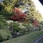 龍潭寺庭園(秋)