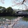 平川門(2018春)