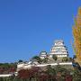 秋の三の丸広場[提供:姫路市]