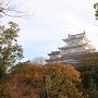 姫路城と紅葉[提供:姫路市]