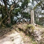 四王寺跡の碑