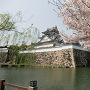 岸和田城春景