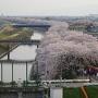 天守からの犀川堤の眺め