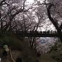 白兎橋と外堀