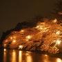 内堀と夜桜