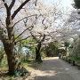 明石城本丸への道