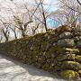 石垣(中仕切門辺り)