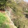 石垣と階段と散った桜