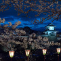 春の夜の石川門(ライトアップ)[提供:金沢市]