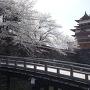 満開の桜と冠木橋と天守