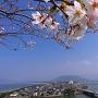唐津城から虹の松原をのぞむ