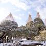 兼六園の雪吊り[提供:金沢市]