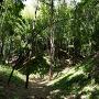 空堀 竹のアーチ