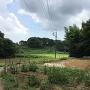 妙見神社南側風景