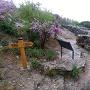 清水山城の一の丸の石垣