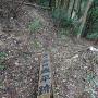倒壊した標柱と竪堀