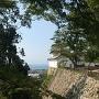 西の丸西側の高石垣と三重櫓