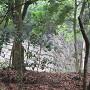 木々の間から見える登り石垣