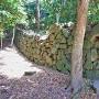 東の丸石垣(北側)