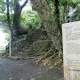 案内板と攻城階段