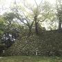 南の丸の継ぎ足された石垣
