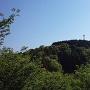 中の山から見る大の山(主郭)