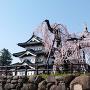 弘前城の天守と桜