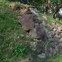 伝天守台の石垣