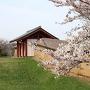 満開の桜と外郭東門