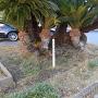 木製城跡碑