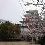 天守と桜(2017.04.07)