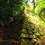 南の丸隅櫓跡石垣