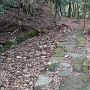八幡宮石畳