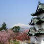 弘前城、桜と残雪の岩木山