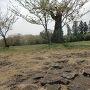 古代の石敷跡