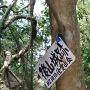 木に掛けてある表示板