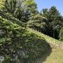 本丸階段の石垣