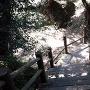 毘沙門岳城 堀切③