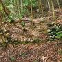 石垣(井戸下)