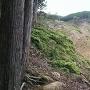 登城道の横の断崖