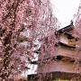 二の丸辰巳櫓