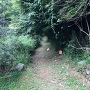 城址入口(小石原小学校跡地の敷地内)