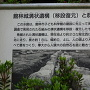 館林城溝状遺構の案内板